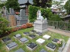 福応寺の樹木葬エリア